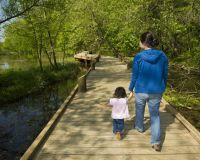 Springfield Nature Center trail