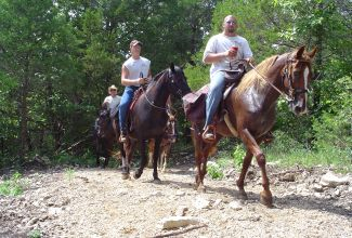 Horses on an MDC trail